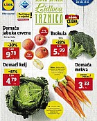 Lidl katalog tržnica do 21.10.
